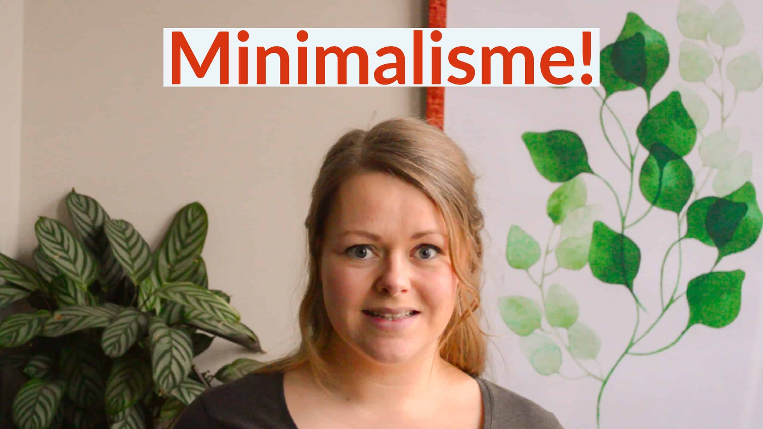 Minimalisme ervaringen - Finance Monkey