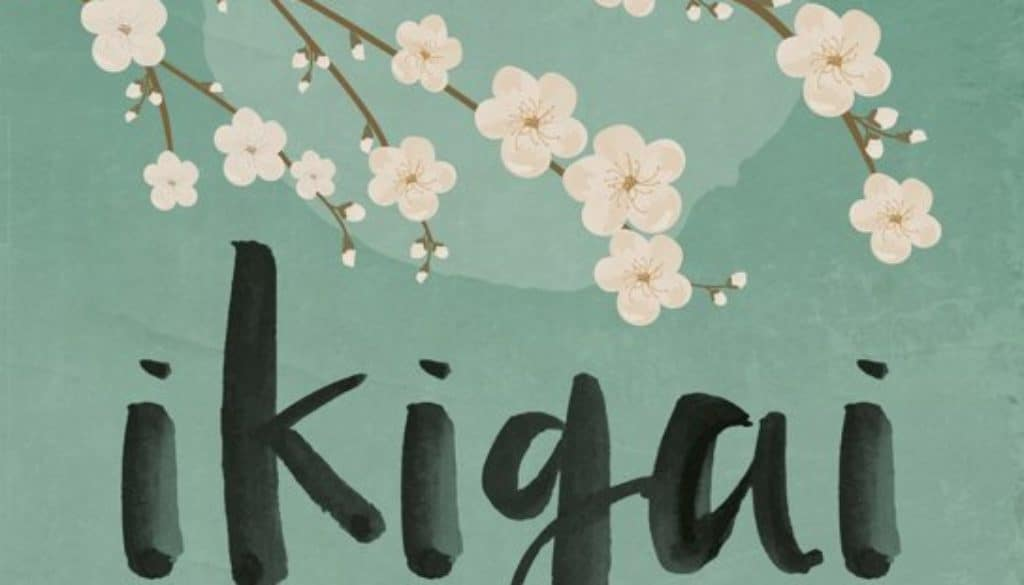 Cover Ikigai - Francesc Miralles Héctor Garcia - FinanceMonkey