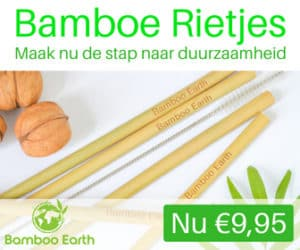 Bamboe rietjes - Bamboo Earth
