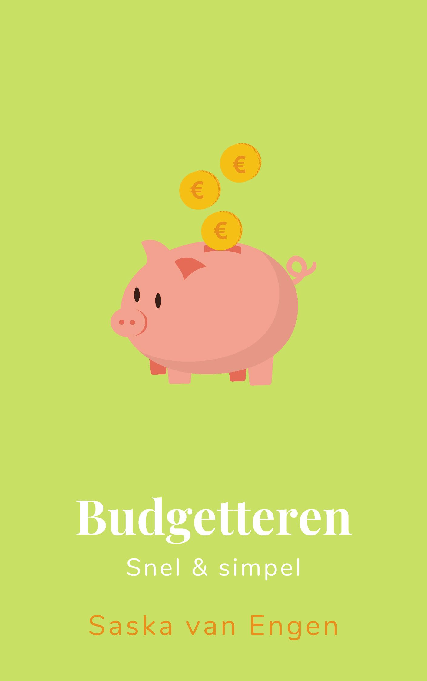 Ebook Budgetteren